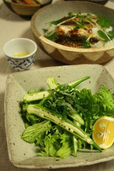 ワサビ菜おくらシソサラダ