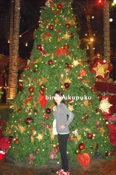 ワイキキクリスマスツリー