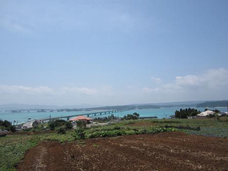 沖縄旅行古宇利島