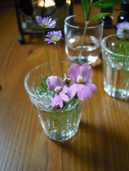 小さなお花達